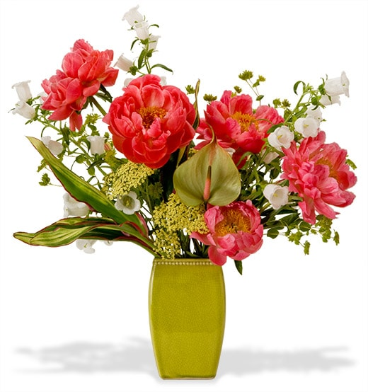 A robust flower arrangement with peonies, campanula and anthirium mixed with blooming branches and French tulips in a tall chartreuse ceramic vase