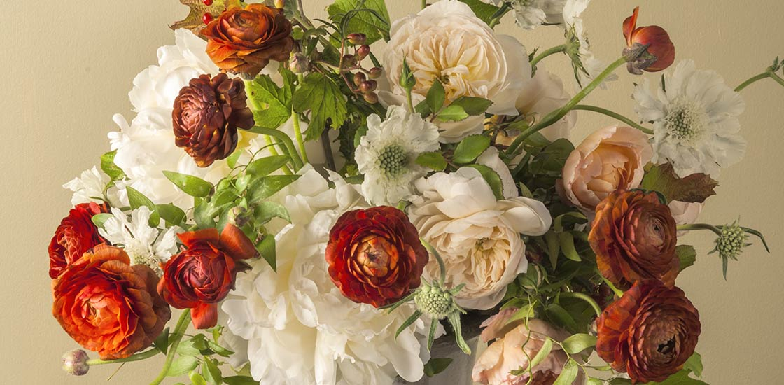 The look of a Flemish painting is found in this floral arrangement of peonies, ranunculus, garden grown roses and white scabiosa from Freshly Cut.